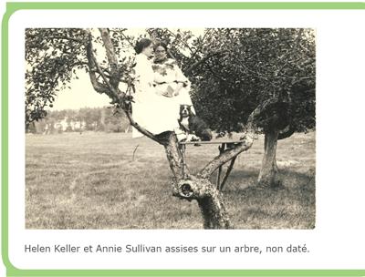 Helen Keller et Annie Sullivan assises sur un arbre, non daté